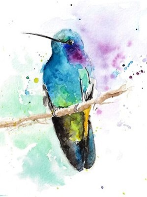 Rainbow-Hummingbird